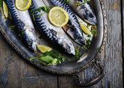 Lợi ích và tác hại của cá thu chúng ta nên biết để lên thực đơn cho chuẩn