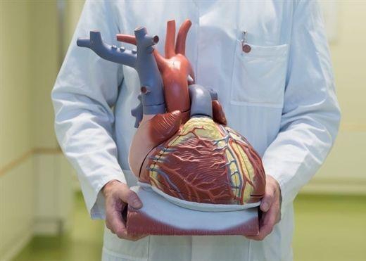 Bệnh tim khiến hàng nghìn người thiệt mạng mỗi năm và đây là nguyên nhân chủ yếu