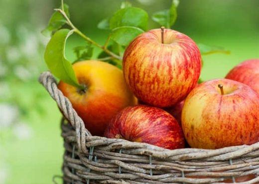 Táo chính là siêu thực phẩm giúp ngăn ngừa ung thư tiền liệt tuyến
