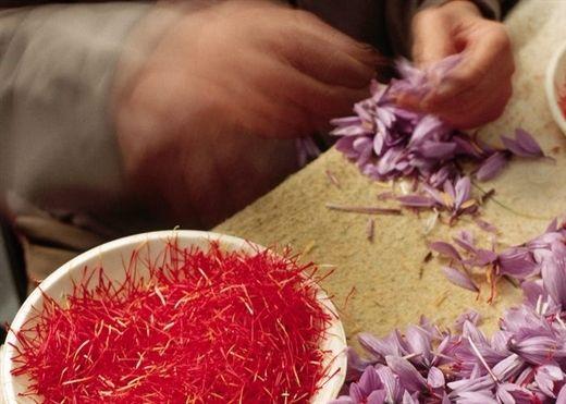Vì sao ngày càng nhiều người tìm mua nhụy hoa nghệ tây bất chấp chi phí đắt đỏ?