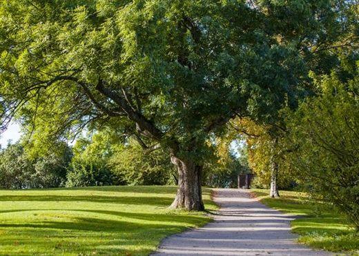 Sống trong không gian xanh với nhiều cây cối bao quanh giúp người ta ít hút và dễ cai thuốc lá hơn
