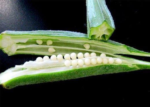 Cách sử dụng đậu bắp để kiểm soát bệnh tiểu đường