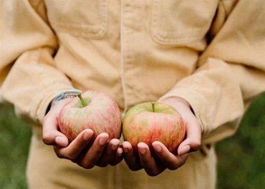 Thực phẩm hữu cơ sốt rần rần khiến nhà nào cũng muốn mua mà không biết rằng chúng cũng có nhiều nhược điểm