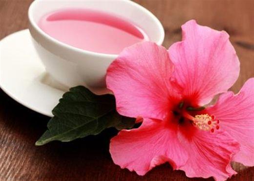 Trà hoa dâm bụt: Thức uống trong chế độ ăn kiêng nhiều thập kỷ qua bất ngờ hot trở lại vì quá nhiều lợi ích