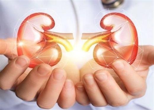 Bổ sung chất xơ có thể giúp giảm độc tố urê máu ở người mắc bệnh thận