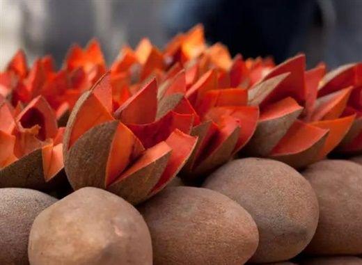 Lý do đáng để thêm hồng xiêm vào chế độ ăn uống mùa hè