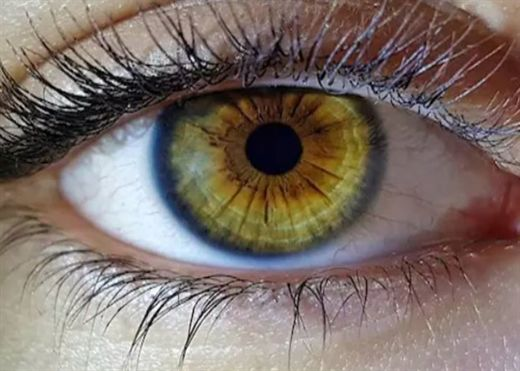 Cảnh báo: Suy giảm thị lực nghiêm trọng làm tăng nguy cơ tử vong cao gần 90%