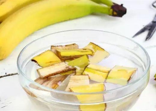 Những lợi ích sức khỏe ít được biết đến của vỏ chuối