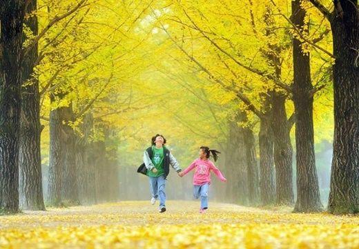 Thiết lập ngay các thói quen để có sức khỏe tốt trong mùa thu này