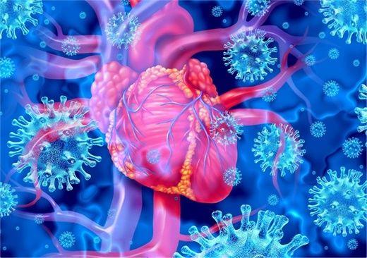 Viêm tim phổ biến hơn ở nam giới sau khi tiêm vaccine ngừa COVID-19 của Pfizer và Moderna