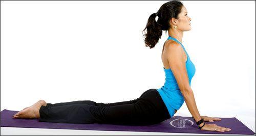 Tập yoga tại nhà- hết stress, hết béo