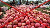 Trung Quốc chưa trả lời về số hoa quả nhiễm độc